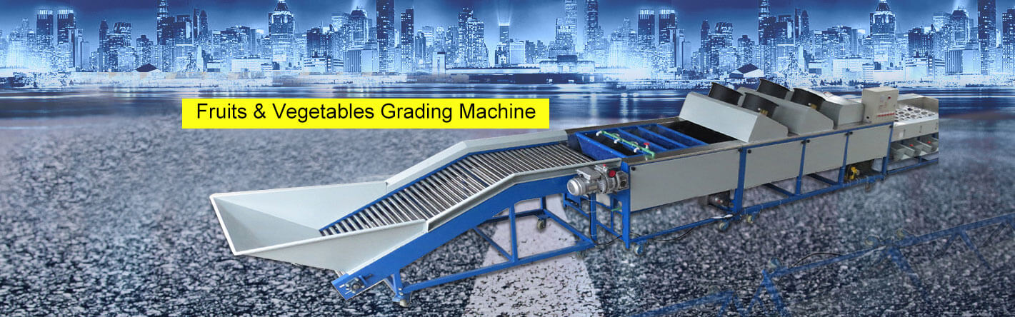 Fruits & Vegetables Grading Machine