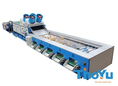 potato cleaning grading machine