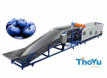 blueberry grading machine