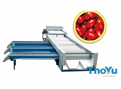 cherry tomato sorting machine