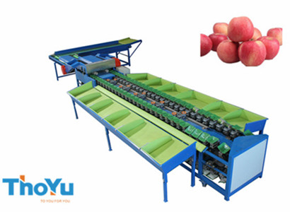 automatic apple weight grading machine