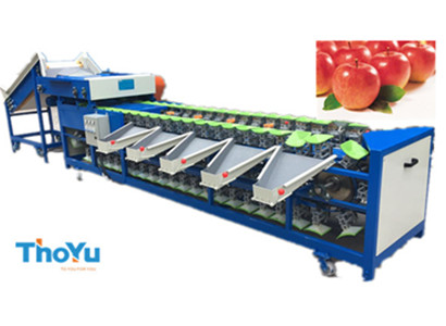 automatic apple weight sorting machine