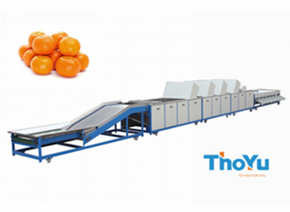 citrus cleaning waxing grading machine